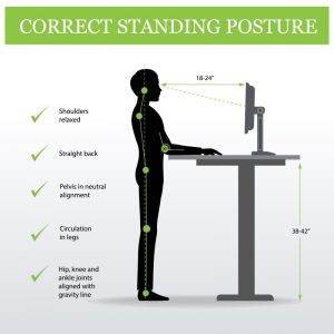 standing desk posture advice from our stoke chiro