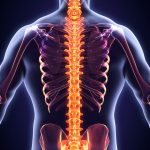 The 10 Most Useful Items When Dealing With Debilitating Back Pain